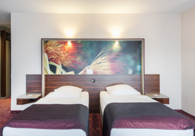 Superior twin bed room_4
